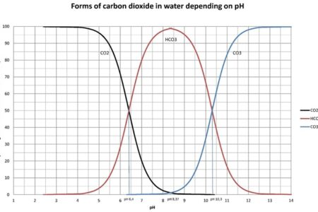 The influence of various forms of carbon dioxide in water on its pH value